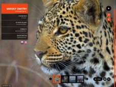 Создание сайта фотографа-натуралиста